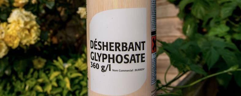 Emmanuel Macron souhaite interdire le glyphosate, mais certaines personnes comptent s'y opposer. © REMY GABALDA / AFP